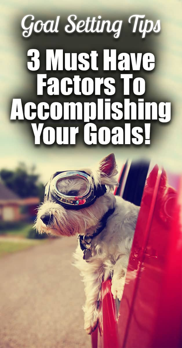 "Goal Setting Tips - 3 Must Have Factors To Accomplishing Your Goals! | Today we are going to talk about goal setting! I would say this is a good time of year to do this, but really I find myself having to do quarterly goal setting. YES, REALLY! I stop ""working"" (running on the hamster wheel) and start making sure that all the work I am doing is actually productive work!"
